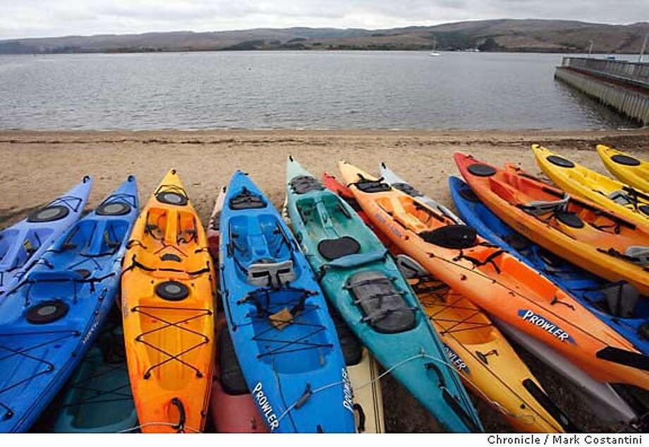 Over the rainbow: The entire spectrum is available to visitors at Blue Waters Kayaking on Tomales Bay, not far from Olema. Chronicle photo by Mark Costantini