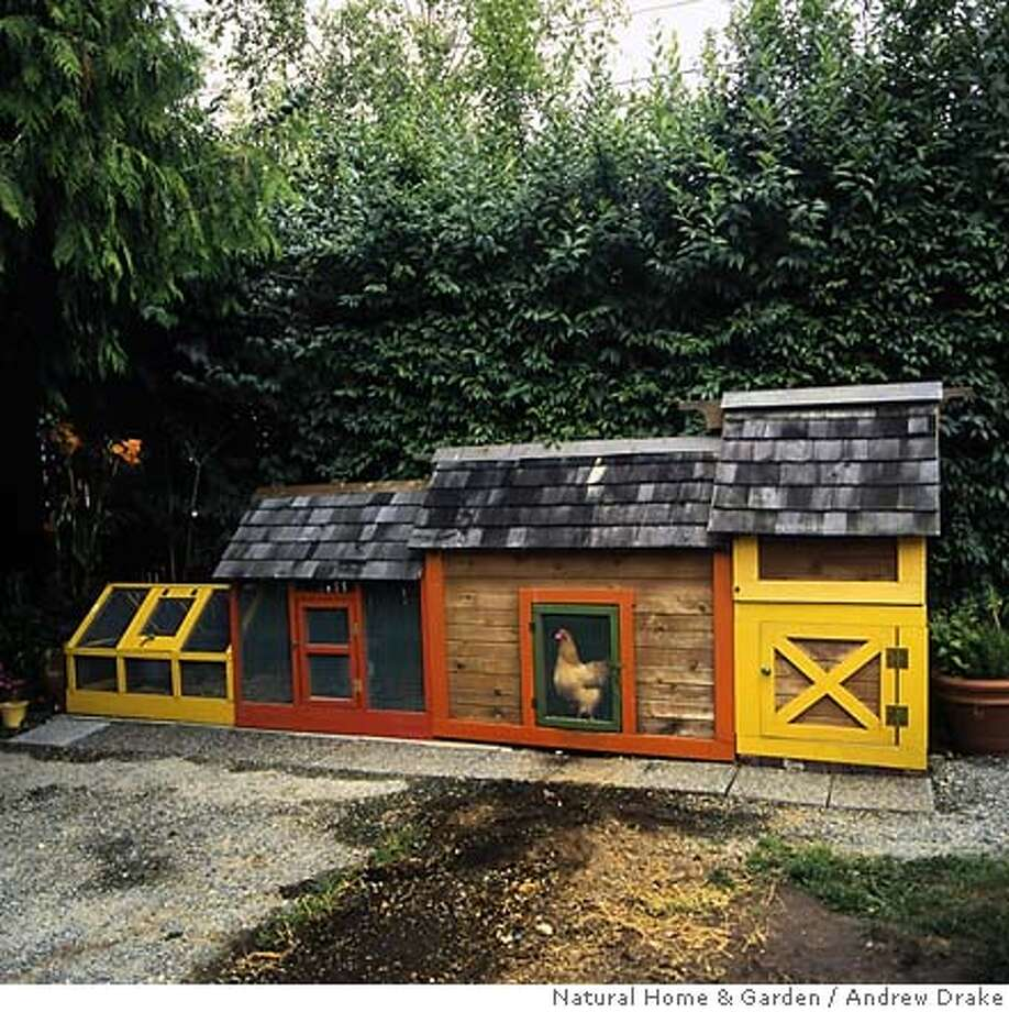 Portable chicken coops keep the birds on fresh ground, out of their own manure. Natural Home & Garden photo by Andrew Drake