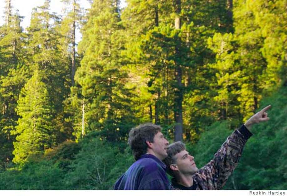 Amateur naturalists Chris Atkins, right, and Michael Taylor discovered the redwood believed to be the tallest tree in the world. They named their find Hyperion. Photo: Glen Martin