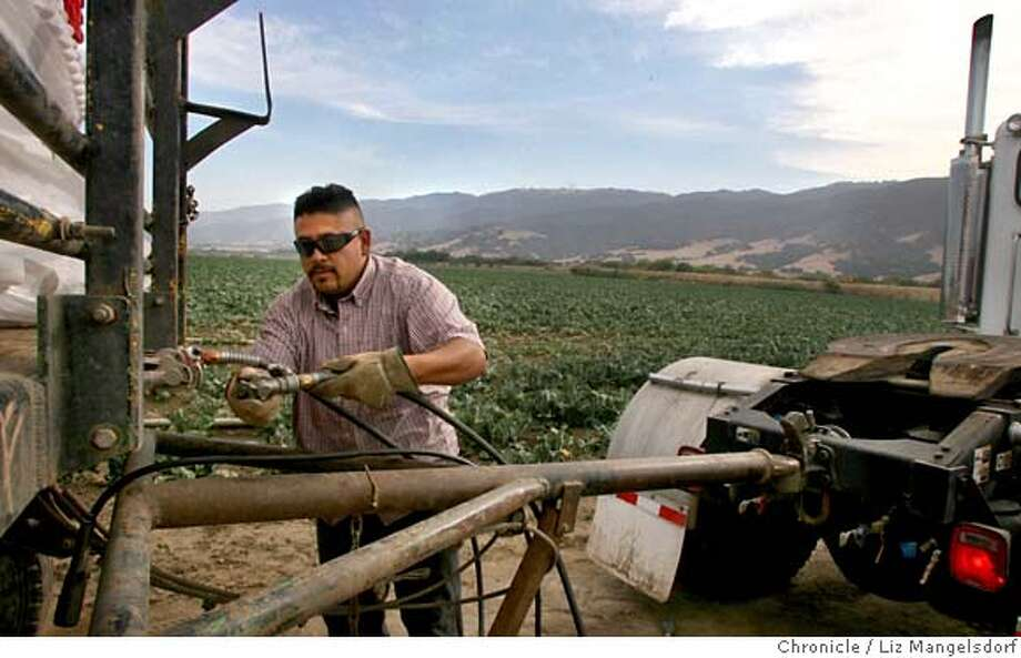 Daniel Rivas, a truck driver for Misionero Produce of Salinas, talks with us about how the spinach contamination will effect people he knows. We talk with him on a farm just outside Chualar, a few miles south of Salinas, on Sept. 18, 2006.  Liz Mangelsdorf /The Chronicle  ***Daniel Rivas, (from reporter) MANDATORY CREDIT FOR PHOTOG AND SF CHRONICLE/ -MAGS OUT Photo: Liz Mangelsdorf