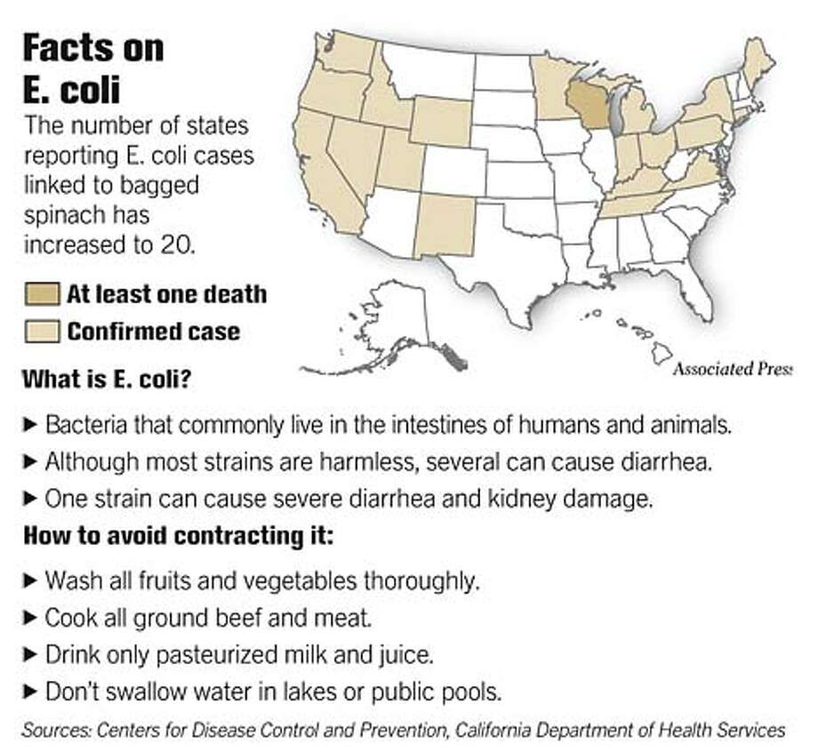 Facts on E. coli. Associated Press Graphic