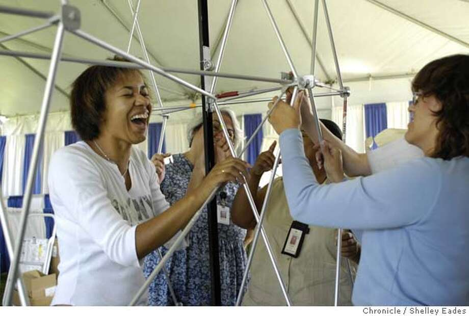 left to right, Alena Stechova, left, has a laugh with her fellow City of Fremont employees Marylou Johnson, Loretta Williams and Kim Marshall, while putting up a booth display for Fremont's 50th anniversary this weekend in Central Park.  Photo by Shelley Eades/ The Chronicle /mandatory credit photog Mags out. Photo: Shelley Eades