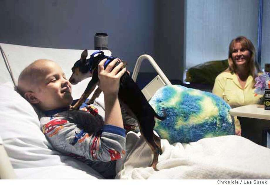 chemo07_113_ls.JPG  Kyle Wetle, 8, is reunited with Chemo, his Chihuahua puppy in his hospital room at UCSF Children's Hospital on Wednesday, September 6, 2006. In the background is Kyle's grandmother, Kathi Sheehan.  Photo by Lea Suzuki/The San Francisco Chronicle  Photo taken on 9/6/06, in San Francisco, CA. **(themselves) cq. MANDATORY CREDIT FOR PHOTOG AND SAN FRANCISCO CHRONICLE/ -MAGS OUT Photo: Lea Suzuki