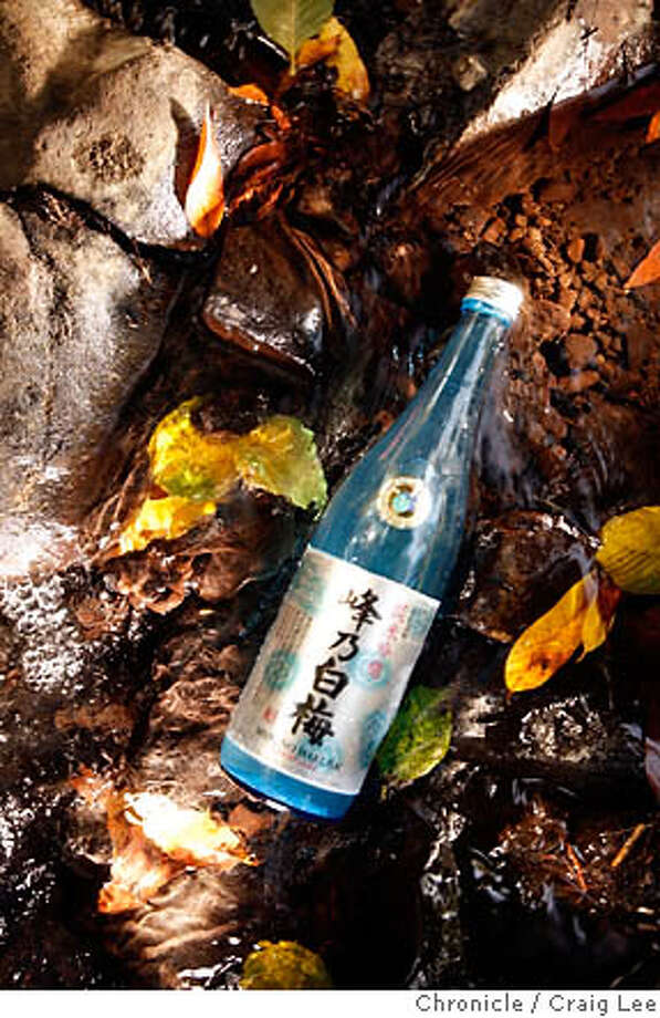 SAKE31_207_cl.JPG  Photo of a sake bottle in a creek for an illustration for sake.  Craig Lee / The Chronicle MANDATORY CREDIT FOR PHOTOG AND SF CHRONICLE/ -MAGS OUT Photo: Craig Lee