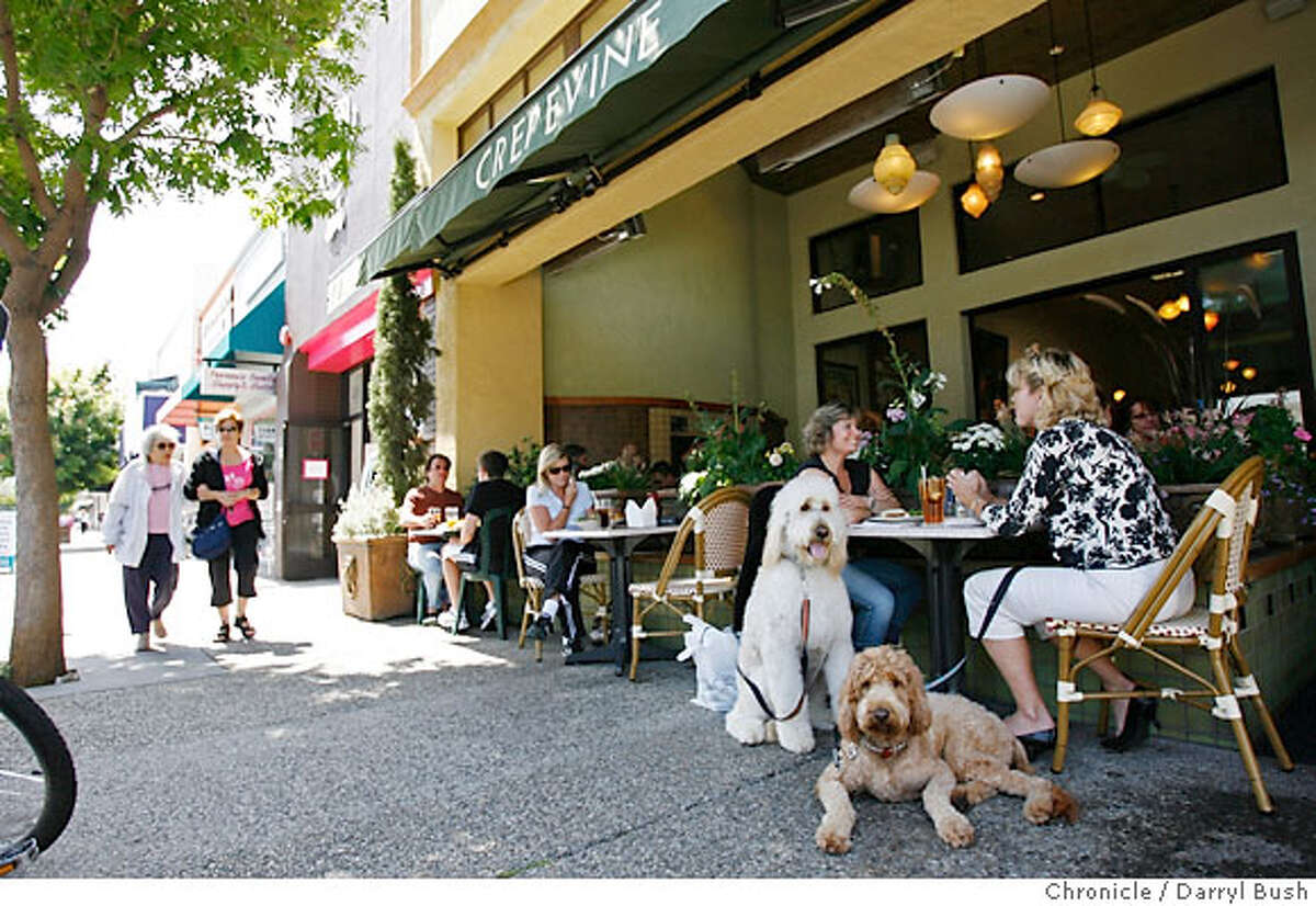 bargain31_crepevine_0018_db.JPG Jamie Frankos and Sue Chamberlain, near right, both of Foster City, have lunch on the patio with Chamberlain's two Golden Doodles, Aztec, a male, 2, and Zuni the brown female, also 2, at the Crepevine restaurant on Burlingame Ave. in Burlingame, CA on Wednesday, August 23, 2006. 8/23/06 Darryl Bush / The Chronicle ** Jamie Frankos, Sue Chamberlain (cq)