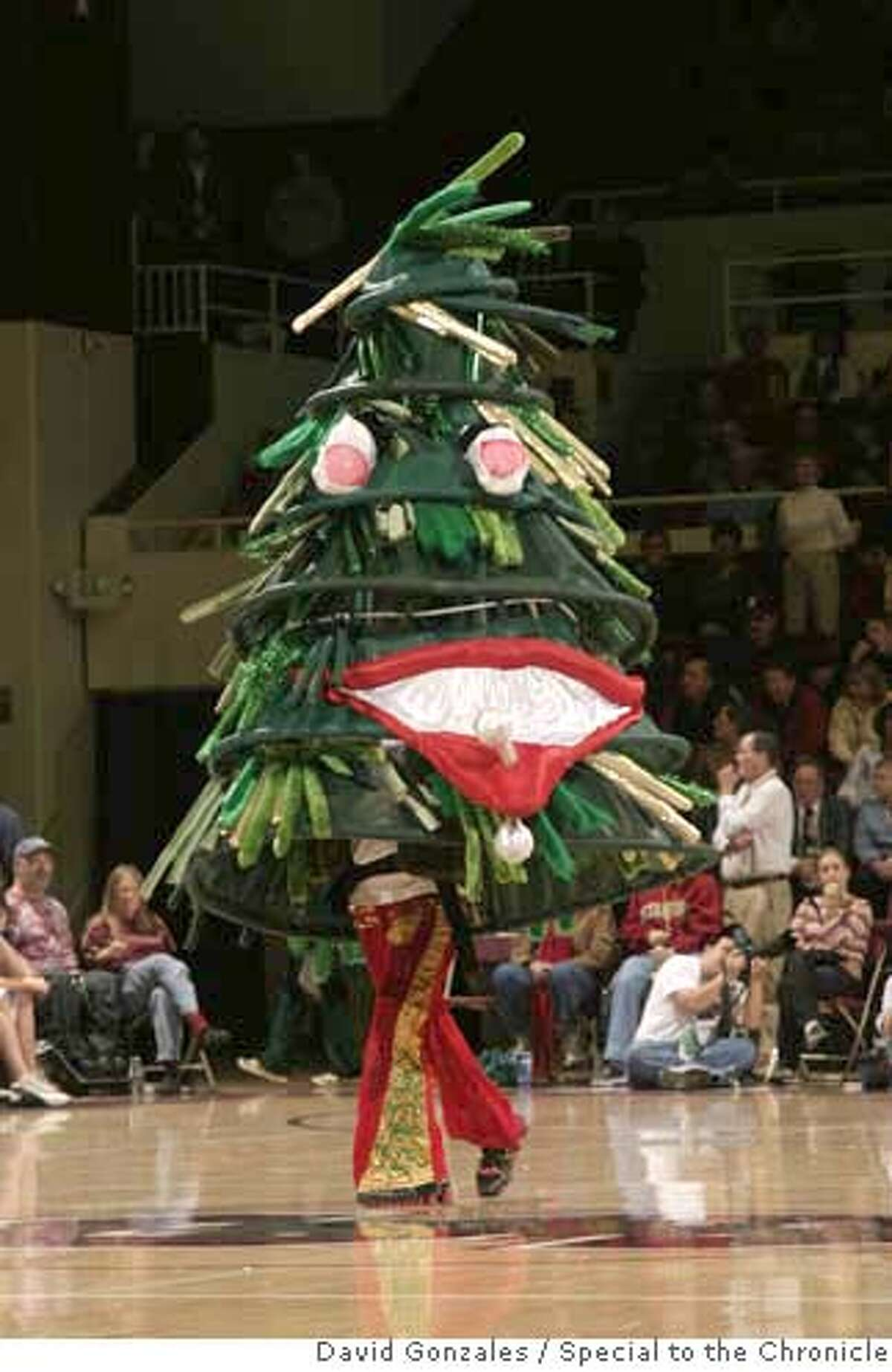 STANFORD_TREE_004.JPG The Stanford Tree during Stanford's 74-67 loss to Tennessee at Maples Pavilion in Stanford, CA. 4 December 2005: Photo by David Gonzales/Special to the Chronicle.