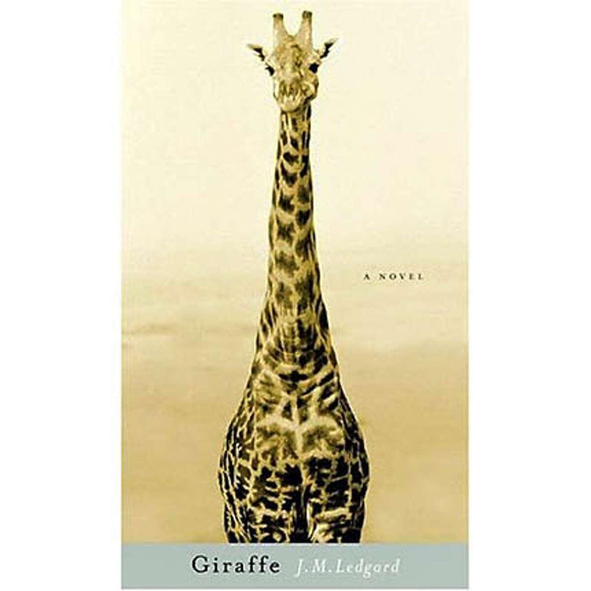 """Giraffe"" by J.M. Ledgard"