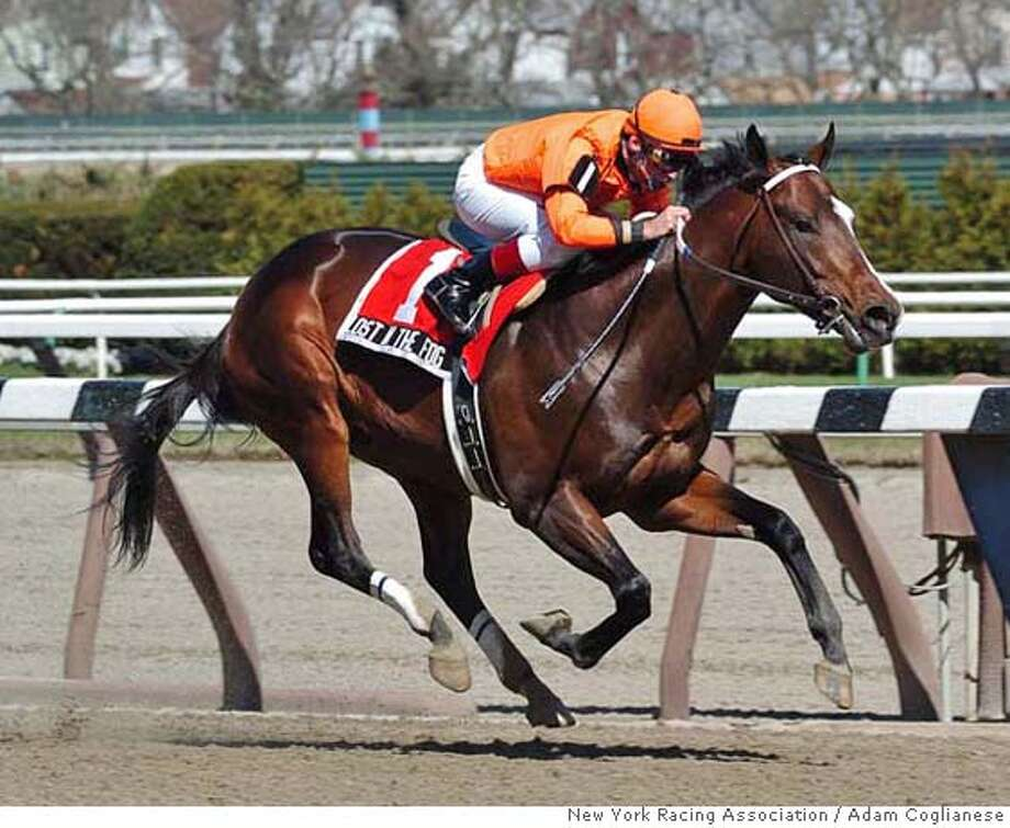 ** FILE ** This photo provided by the New York Racing Association shows Lost in the Fog, ridden by Russell Baze, cruising home for the win in the $150,000 Bay Shore in this April 9, 2005, file photo, at Aqueduct in New York. Lost in the Fog, the 4-year-old colt who won the 2005 Eclipse Award as sprinter of the year, has a suspected cancerous growth in his spleen. The horse will undergo an exploratory procedure Friday, Aug. 18, 2006, to determine whether the growth, thought to be lymphoma, has metastasized to other parts of his body, trainer Greg Gilchrist said. (AP Photo/New York Racing Association, Adam Coglianese) APRIL 9, 2005, PHOTO PROVIDED BY THE NY RACING ASSOCIATION; EFE OUT Photo: ADAM COGLIANESE