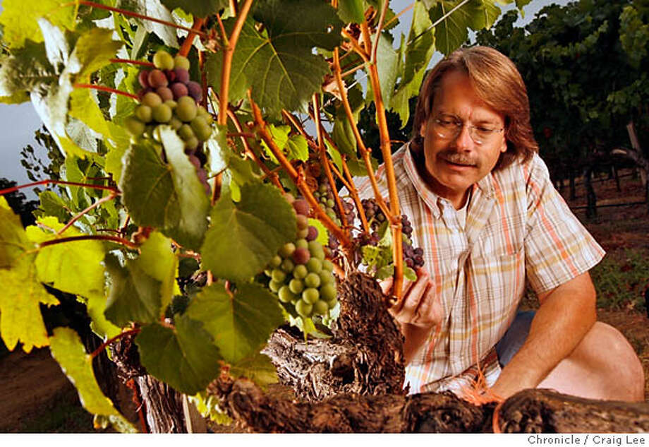 RRVPINOT17_047_cl.JPG  Photo Bob Cabral, winemaker at Williams Selyem Winery. Photo of Bob Cabral next to the winery's Pinot Noir grapes. Event on 8/8/06 in Healdsburg. Craig Lee / The Chronicle MANDATORY CREDIT FOR PHOTOG AND SF CHRONICLE/ -MAGS OUT Photo: Craig Lee