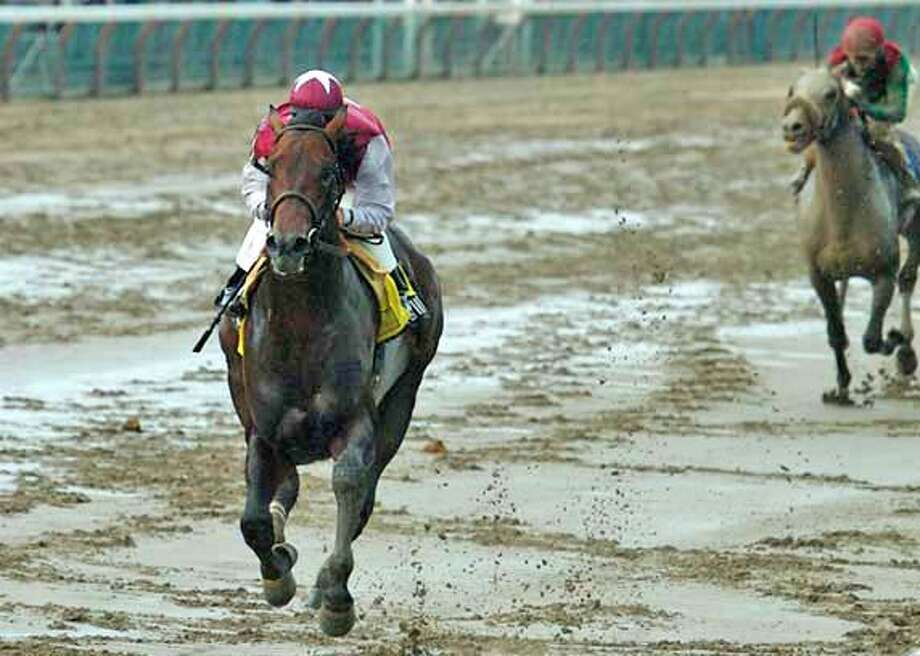 Jockey Javier Castellano rides Bernardini to a soggy -- but easy -- victory in the Jim Dandy Stakes at Saratoga Race Course in N.Y. Associated Press photo by Jon Winslow