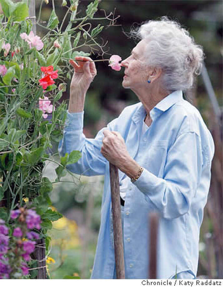 Connie Spanier breathes in the sweet scent of sweet peas at the Fort Mason Community Garden, where she tends to her regular plot and enjoys the company of other gardeners. Chronicle photo by Katy Raddatz