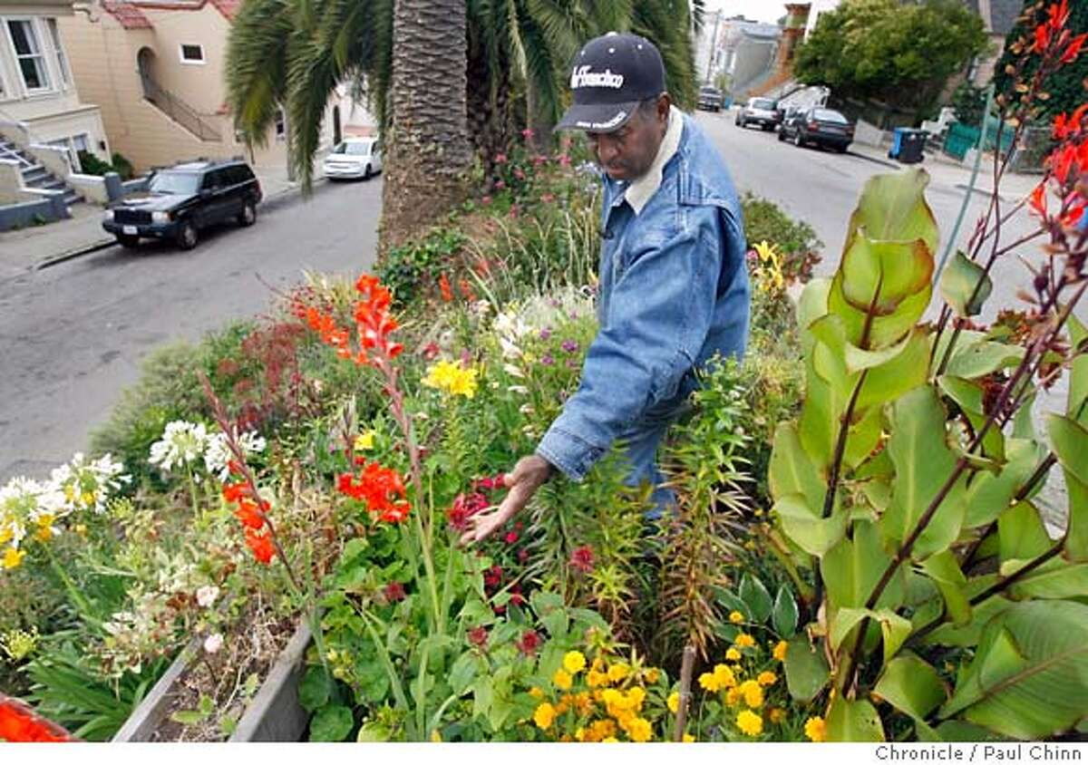 Karl Paige tends to the garden in the median strip of Quesada Avenue in the Bayview district in San Francisco, Calif. on Tuesday, July 11, 2006. Over the past few years Paige and his neighbors have transformed the median strip from a rundown dumping ground into an award-winning lush garden. PAUL CHINN/The Chronicle **Karl Paige MANDATORY CREDIT FOR PHOTOGRAPHER AND S.F. CHRONICLE/ - MAGS OUT