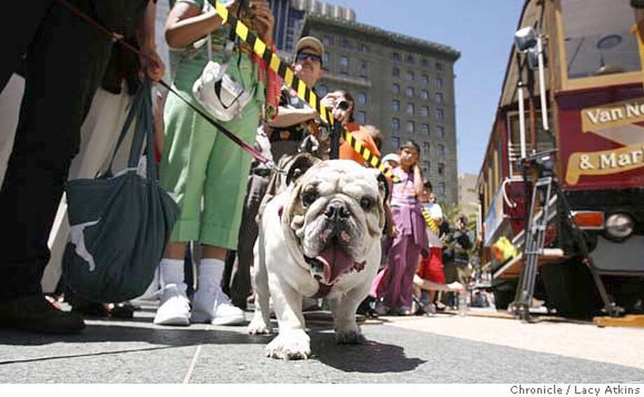 Gauss McMillian was one of the many spectators at the 44th annual cable car bell ringing contest in Union Square, Thursday July 13, 2006, in San Francisco, Ca.  SAN FRANCISCO MUNICIPAL RAILWAY HOLDS ITS 44TH ANNUAL CABLE CAR BELL-RINGING CONTEST , THURSDAY JULY 13, 2006, T UNION SQUARE IN SAN FRANCISCO,CA.(Lacy Atkins/The Chronicle) MANDATORY CREDITFOR PHOTGRAPHER AND SAN FRANCISCO CHRONICLE/ -MAGS OUT Photo: Lacy Atkins