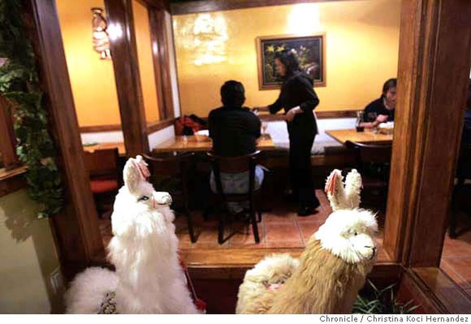 """LLamas adorn the dining room of the Interior of """"Mi Lindo Peru,"""" a Peruvian restaurant in SF's Marina district that also serves Spanish tapas. (CHRISTINA KOCI HERNANDEZ/THE CHRONICLE)) Mandatory Credit For Photographer and San Francisco Chronicle/No-Sales-Mags Out Photo: Christina Koci Hernandez"""