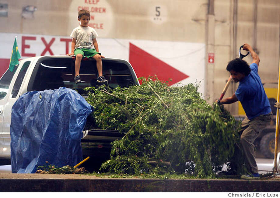fathersday_123_el.jpg Landscaper Antonio DaSilva, Corte Madera, unloads his truck full of brush while his son Fredy,5, safely watches from the pickup on Father's Day at the Marin Resource and Recovery Center in San Rafael. Fredy always joins his dad for dump runs, Anotinio thinks is the lolipops that they give the kids. They'll be celebrating once they get home with the rest of his family. Eric Luse/The Chronicle MANDATORY CREDIT FOR PHOTOG / Photo: Eric Luse
