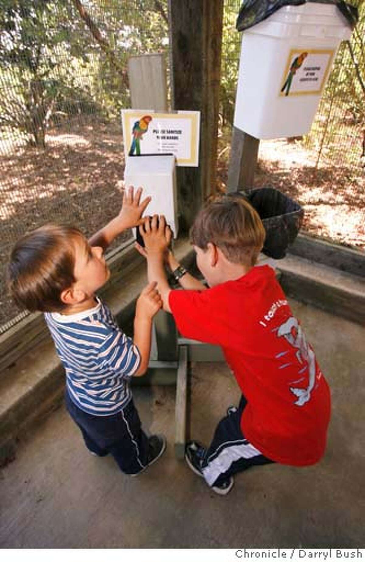 """binnowee_007_db.JPG Zoo visitors, Zachary Colety, 3, and brother Joshua Colety, 5, right, both of San Francisco, begin to wash their hands with sanitizing foam from a dispenser as they leave the walk-in aviary called, """"Binnowee Landing,"""" where they hand fed Australian birds at San Francisco Zoo in San Francisco, CA on Thursday, June 15, 2006. shot: 6/15/06 Darryl Bush / The Chronicle **Zachary and Joshua Colety (cq)"""