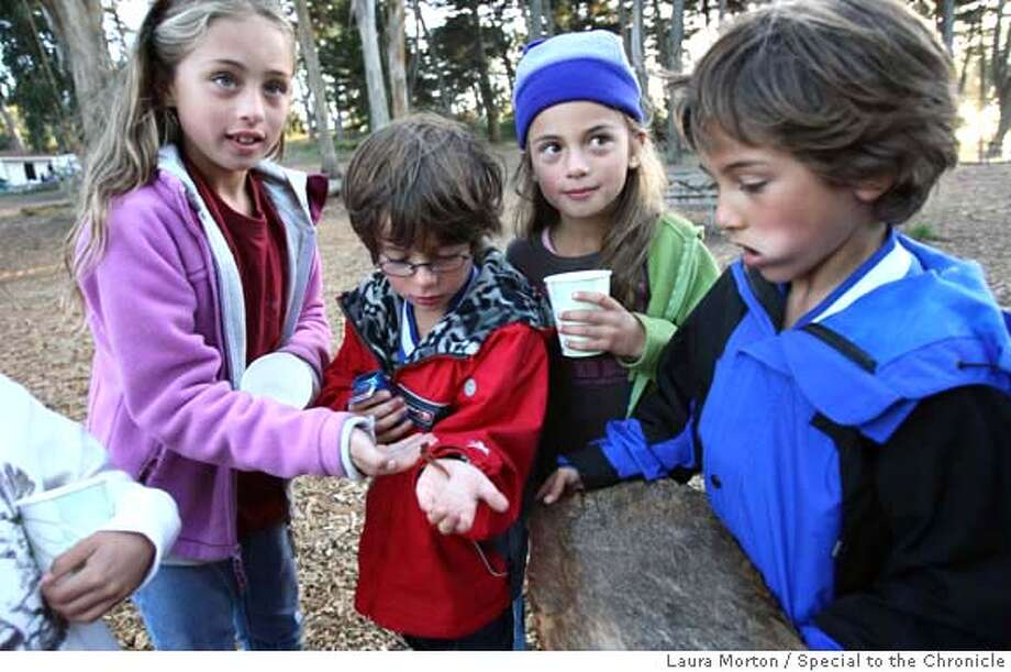 PARKS_KIDS22_0183_LKM.jpg Jordan Pineda, Ellis Webb, Madison Pineda and Kiran Mukherjee (left to right) play with a salamander they found while attending a family campfire program at Rob Hill Campground in the Presidio. In addition to offering the kids a chance to get outdoors, the campfire, sponsored by the Crissy Field Center, included making s'mores, stories by park rangers and singing campfire songs. (Laura Morton/Special to the Chronicle) *** Jordan Pineda  *** Ellis Webb  *** Madison Pineda  *** Kiran Mukherjee Photo: Laura Morton
