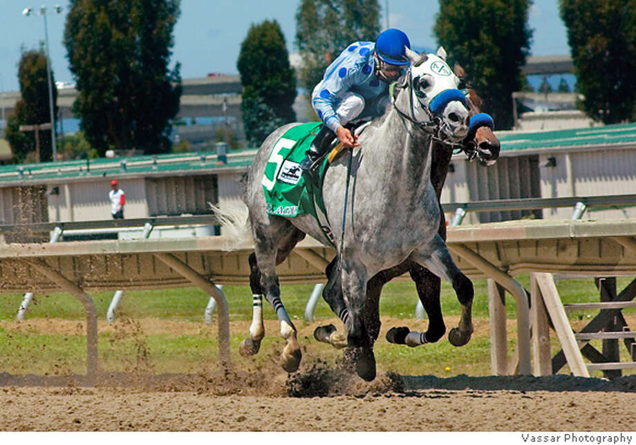 CARTHAGE_FINISH_001.JPG  Winner of the Bay Meadows Breeders' Cup Sprint, Carthage, shown here competing on Sunday, June 4, 2006. The race was a $125,000 guaranteed Grade III race. Photo: Vassar Photography