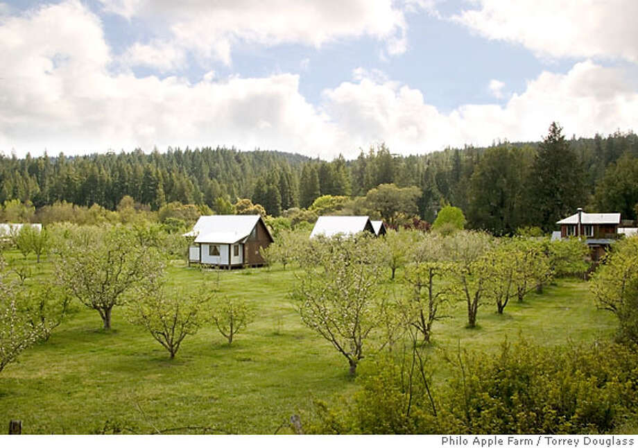 The cottages of Philo Apple Farm in Mendocino County's Anderson Valley sit amid an organic apple orchard. Photo: Philo Apple Farm / Torrey Dougla