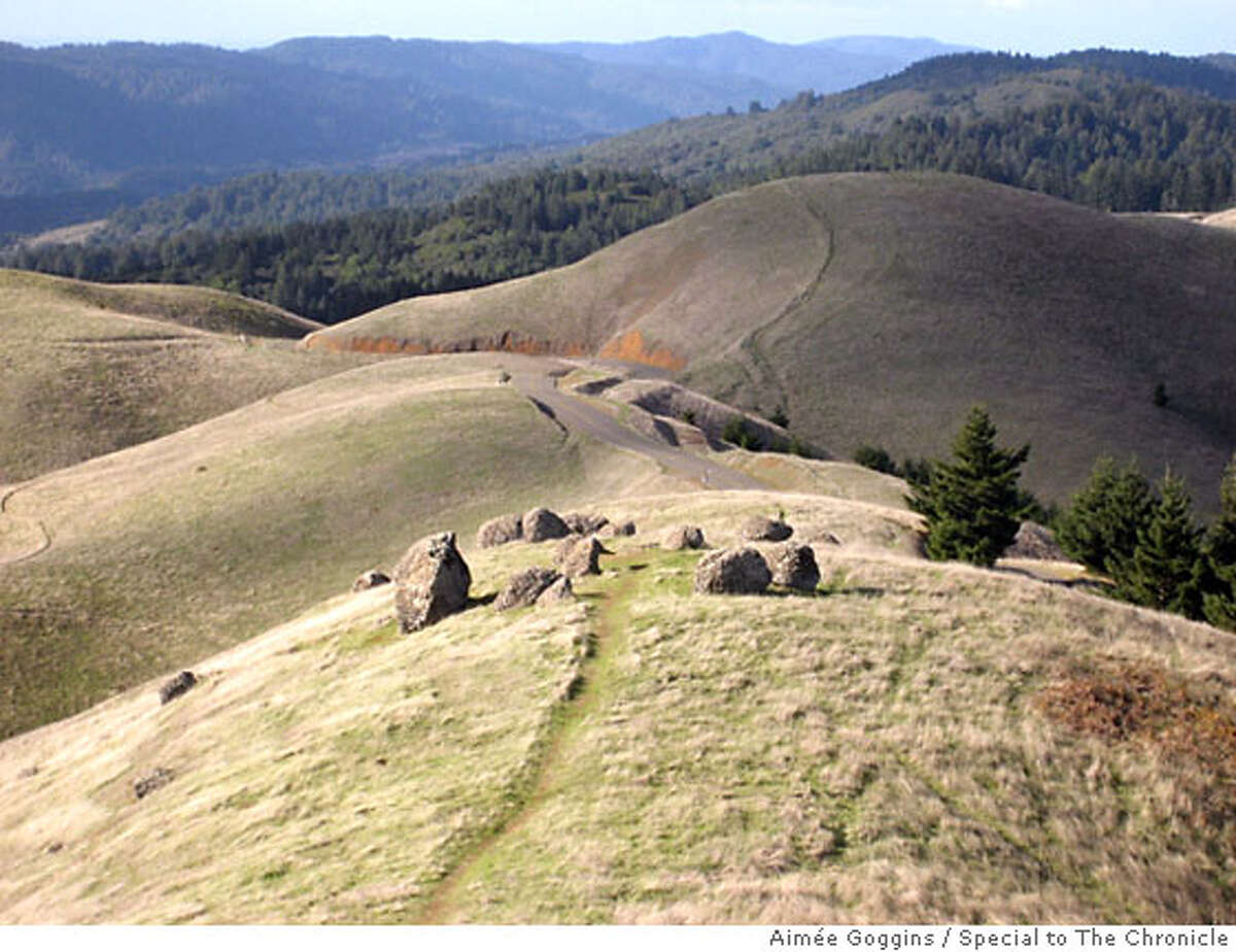 TRAVEL BOLINAS -- The stone circle in the Bolinas Ridge in West Marin can be harder to find than the town of Bolinas itself. Photo by Aimee [note acute accent over first e] Goggins / Special to The Chronicle