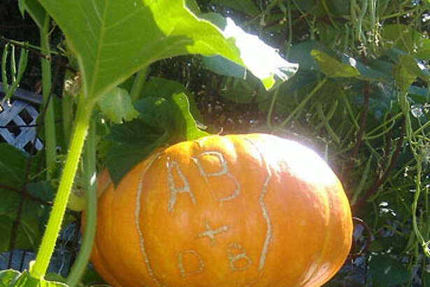 Initials carved in pumpkin grow with the shell