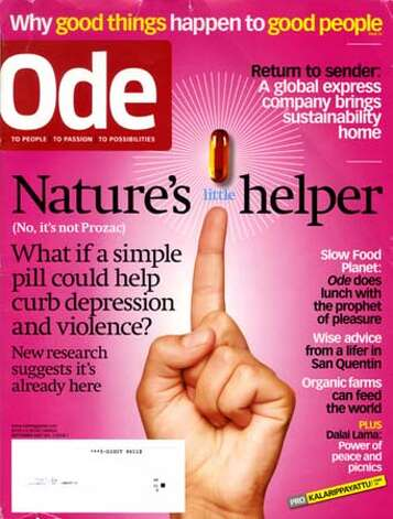Ode magazine opens offices in Marin. One of several lifestyle magazines setting up shop in the North Bay.  Ran on: 10-05-2007  Ode's co-founder Jurriaan Kamp (center, standing) meets with staffers (from left) Katie Keenan (seated), Mimi Dutta, co-founder Helene de Puy, Nina Witt, Marco Visscher and Marlene Saritzky.  Ran on: 10-05-2007 Photo: HO