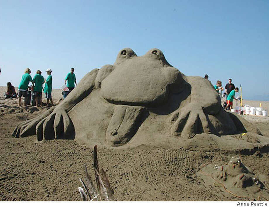 This frog was voted bested in show at the 2006 Sandcastle Classic at San Franciscos Ocean Beach. Photo: Anne Peattie