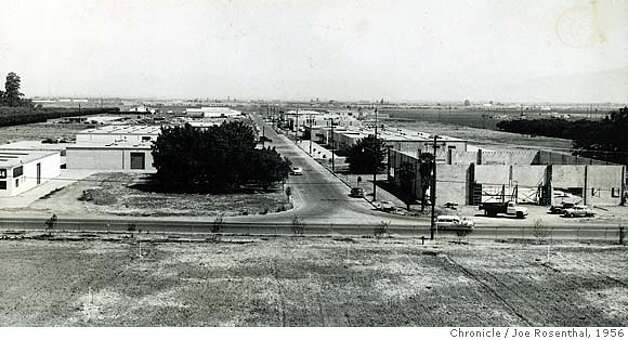 August 6, 1956 - Commercial Street in Sunnyvale thrives as surveyors chart the General Motors site, a corner of which is barely visible behind the clump of trees at right. Joe Rosenthal/ San Francisco Chronicle File Photo 1956 Photo: Joe Rosenthal