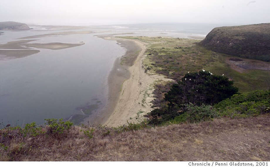 DRAKE4-C-13JUL01-MT-PG Drake's Estero in Pt Reyes Nat'l Seashore.The tiny cove where Sir Francis Drake is believed to have repaired his ship 422 years ago has reappeared, after vanishing for nearly half a century. CHRONICLE PHOTO BY PENNI GLADSTONE Photo: Penni Gladstone
