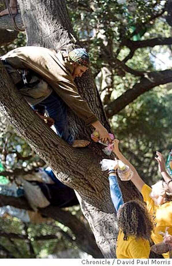 BERKELEY, CA - SEPTEMBER 14: Supporters of the tree sitting protesters hand off food to one of the tree sitters at UC Berkeley September 14, 2007 in Berkeley, California. They jumped over the fence to bring food and water to the protesters in the trees as well as to clean up inside the fenced in area. (Photo by David Paul Morris/The Chronicle)  Ran on: 09-20-2007  Supporters of tree-sitting protesters hand off food to one of the tree sitters at UC Berkeley on Sept. 14. Photo: David Paul Morris