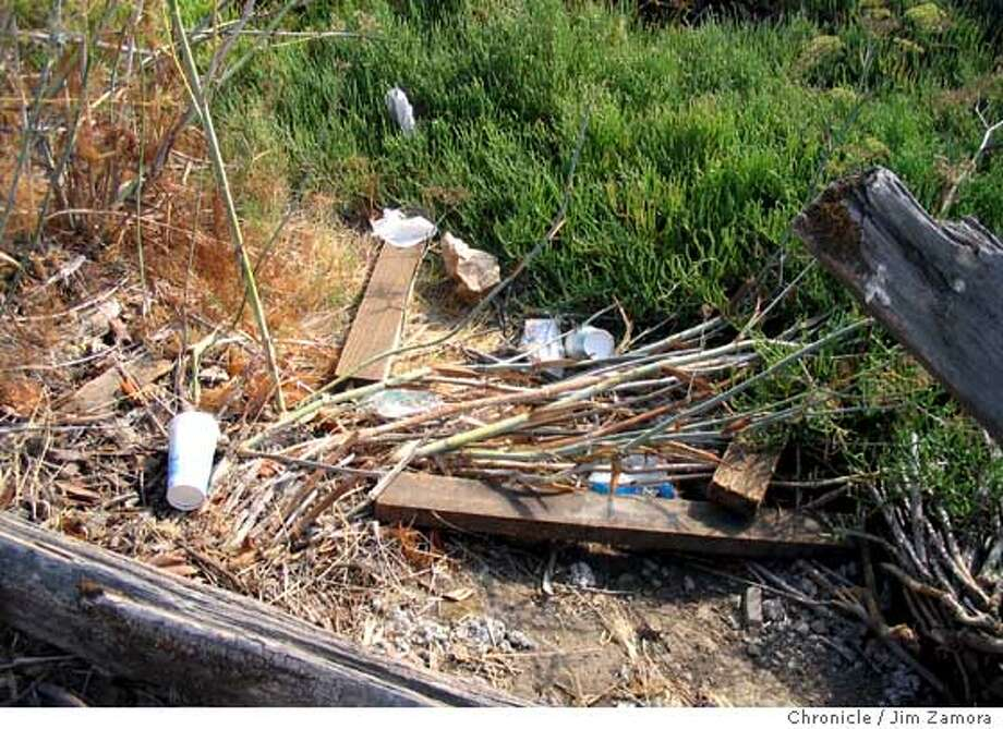 These are before and after photos at Pickleweed Park wetlands area along San Rafael Creek (also known as the Canal).  BY JIM ZAMORA/THE CHRONICLE  Ran on: 09-19-2007 Ran on: 09-19-2007 Ran on: 09-19-2007 Ran on: 09-19-2007 Photo: Jim Zamora