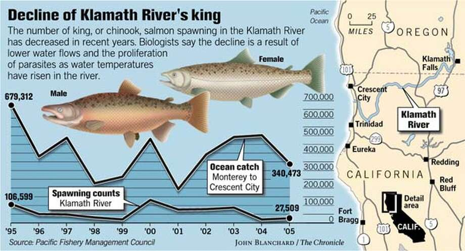 (A1) Klamath River's King