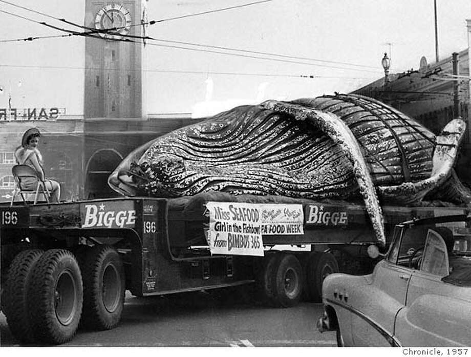 """Dolphina,"" the girl in the fishbowl at Bimbo's 356 Club, rides a float with a dead whale in a National Seafood Week parade on Market Street in 1957. Photo: Chronicle Archive 1957"