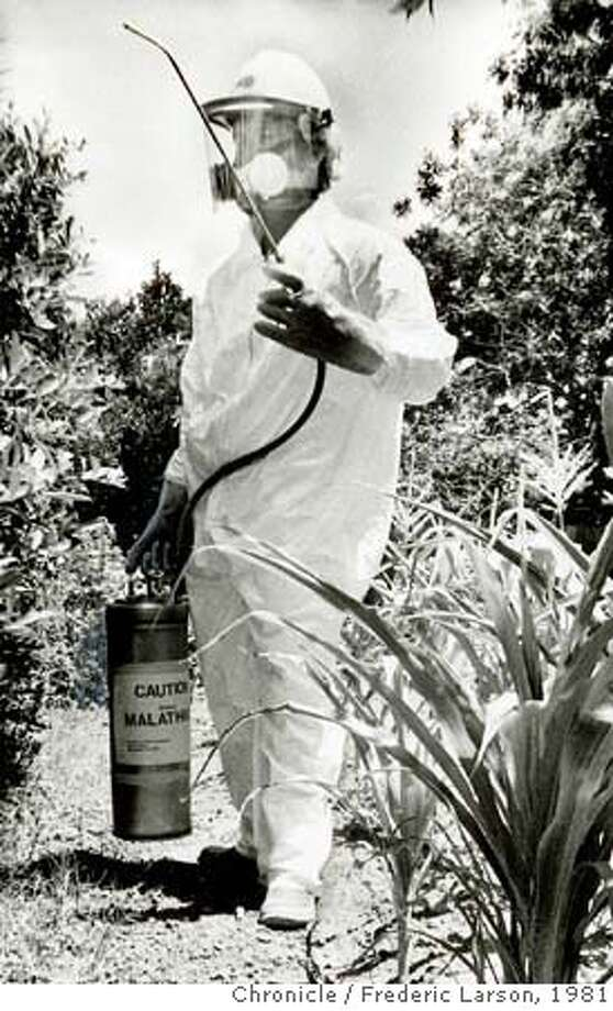 wayback09.jpg Spraying for med flies in Sunnyvale, California on July 9, 1981. Frederic Larson/ San Francisco Chronicle File Photo/1981  Ran on: 07-09-2006  Malathion was sprayed in 1981 to combat the Mediterranean fruit fly. Photo: Frederic Larson