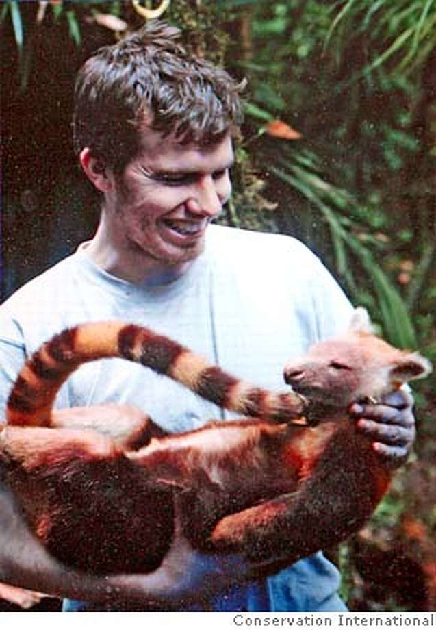 "In this undated photo released by Conservation International, mammal expert Kris Helgen is seen holding a golden-mantled tree kangaroo (Dendrolagus pulcherrimus) discovered on Rapid Assessment Program (RAP) expedition to the Foya Mountains in Indonesia's easternmost Papua province in December 2005. Scientists discovered a ""Lost World"" in an isolated Indonesian jungle, identifying dozens of new species of frogs, butterflies and plants _ as well as the large mammal hunted to near extinction elsewhere, members of the expedition said Tuesday. This was first record of the species in Indonesia and the second known site on earth where it is known to exist. (AP Photo/Conservation International, HO)"
