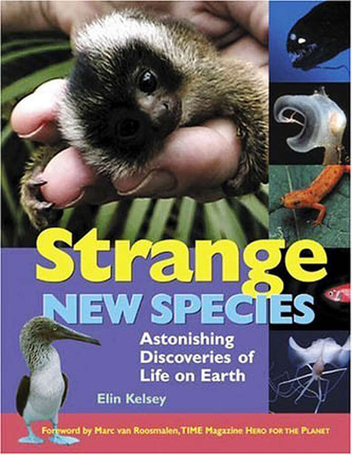 "Book cover art for, ""Strange New Species : Astonishing Discoveries of Life on Earth"" by Elin Kelsey. Photo: No Byline"