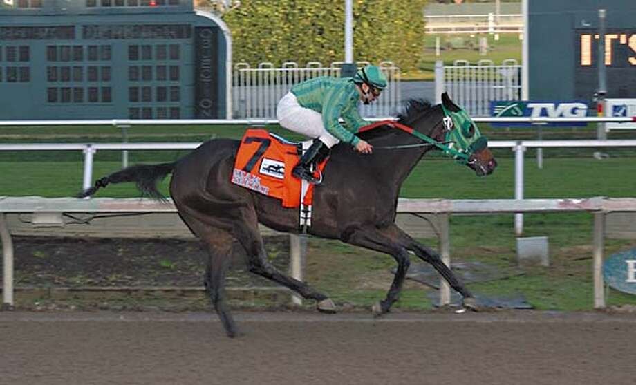 Seam Seeker takes her first two-turn race in stride, winning the $75,000 Burlingame Stakes. Photo courtesy of Bill Vass