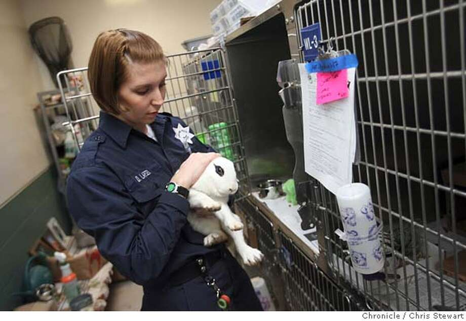 bunnies19_058_cs.jpg  Danica Larsen, an animal control officer with the Oakland Police Department, pets a rabbit doe at the Oakland Animal Services, 1101 29th Avenue. The center has an abundance of bunnies, forty in all, all up for adoption.  Photo taken on 1/19/06 in Oakland, CA. MANDATORY CREDIT FOR PHOTOG AND SAN FRANCISCO CHRONICLE/ -MAGS OUT Photo: Chris Stewart