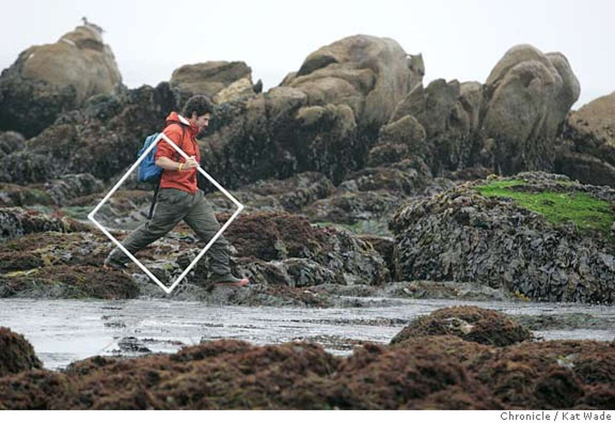 On 8/20/05 in Pacific Grove CA Rafael Sagarin, Phd., from the UCLA Institute of the Environment, recreates an experiment from the 1930's counting species of sea life in the tide pools near the Hopkins Reserve. Kat Wade/The Chronicle