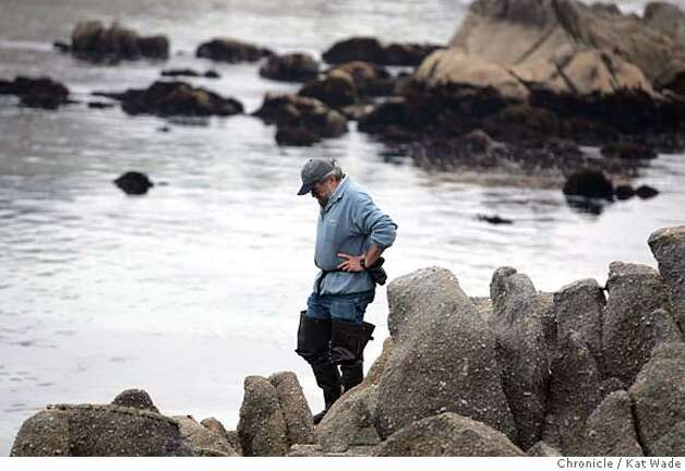 On 8/20/05 in Pacific Grove CA Marine Biologist, John Pearse, Phd, a research professor at UC Santa Cruz studies the tide pool life across the street from his home near the Hopkins Reserve. Kat Wade/The Chronicle Photo: Kat Wade