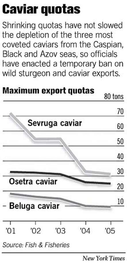 Caviar Quotas. New York Times Graphic