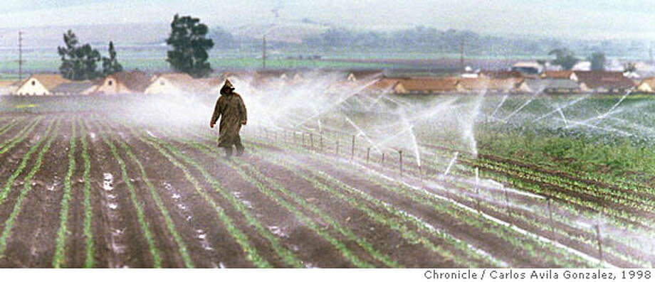 CHUALAR 02/C/08MAY98/MN/CG --- A farmworker trudges through feilds adjusting sprinkler heads just east of the central valley town of Chualar, Ca., where rising Nitrate levels in the water, most likely from farm runoff, have caused the drinking water to be deemed unsafe. (CHRONICLE PHOTO BY CARLOS AVILA GONZALEZ) ALSO RAN: 11/22/2000 Ran on: 09-18-2004  Irrigated farm field in California's Central Valley.  Ran on: 08-27-2007  A farmworker walks through a field, adjusting sprinkler heads as he goes, just east of Chualar, where rising nitrate levels in the water from farm runoff have caused the drinking water to be deemed unsafe. Photo: CARLOS AVILA GONZALEZ