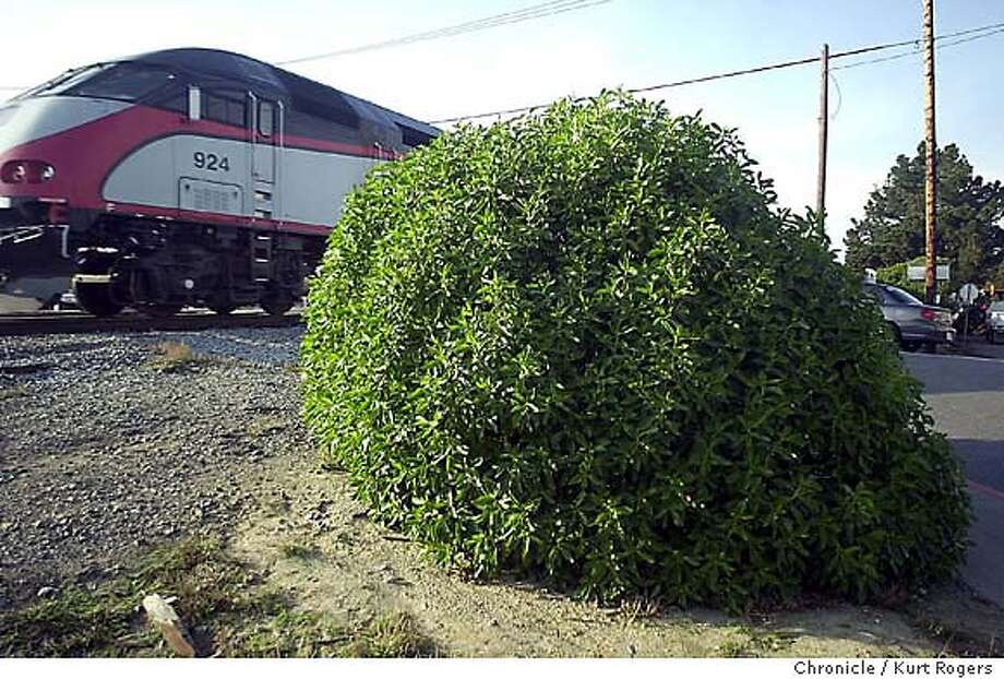 A file photo of a Caltrain in San Bruno.  A man was struck and killed this morning by a southbound Caltrain between Linden Avenue and Scott Street. Photo: KURT ROGERS