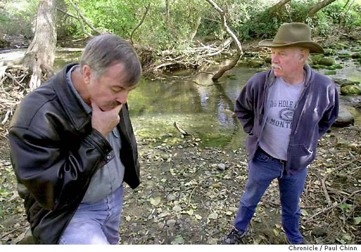 snail030_pc.jpg Fisherman Gary Flanagan (left) and biologist Ken Davis are worried about the future of the trout population if the infestation grows. The tiny New Zealand mud snail has invaded Putah Creek near Winters on 11/25/03. PAUL CHINN / The Chronicle MANDATORY CREDIT FOR PHOTOG AND SF CHRONICLE/ -MAGS OUT