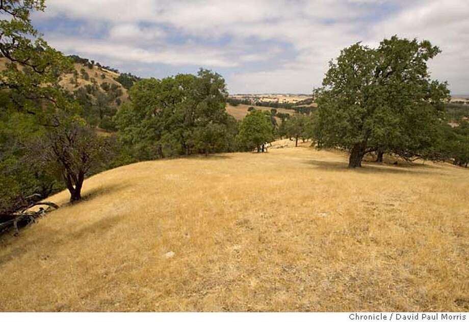 WINTERS, CA - AUG 6: A view of land that was acquired by the California Audubon in Winters California on August 6, 2007 in Winters, California. (Photo by David Paul Morris / The Chronicle) Photo: David Paul Morris
