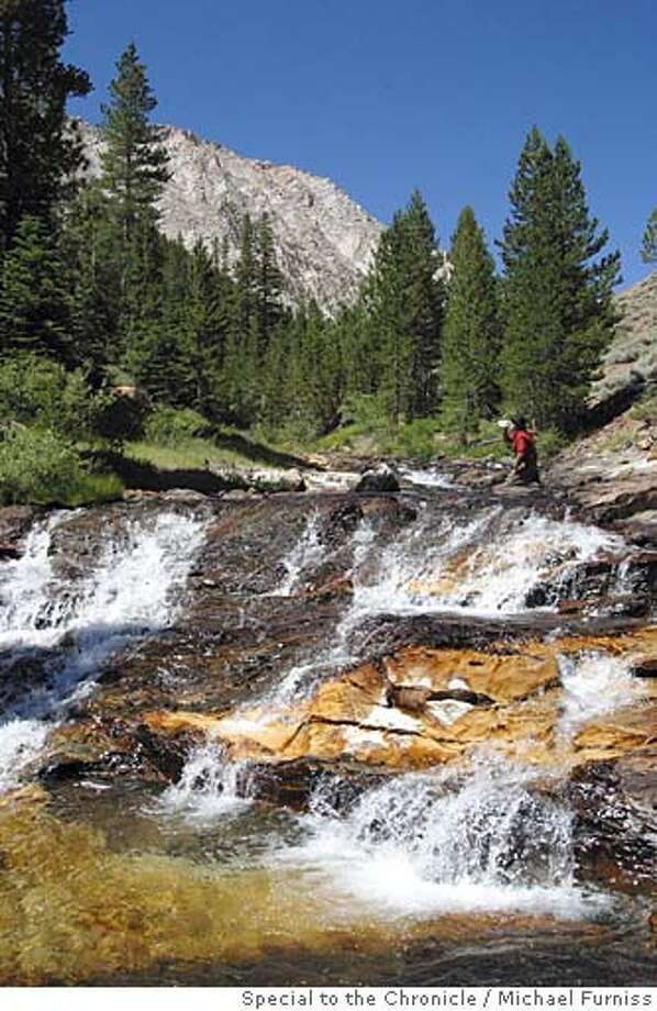 Tom Stienstra stops amid an all-day climb to drink from Rattlesnake Creek, some of the most pure water on earth. Photo by Michael Furniss / Special to the Chronicle Photo: Photo By Michael Furniss / Speci