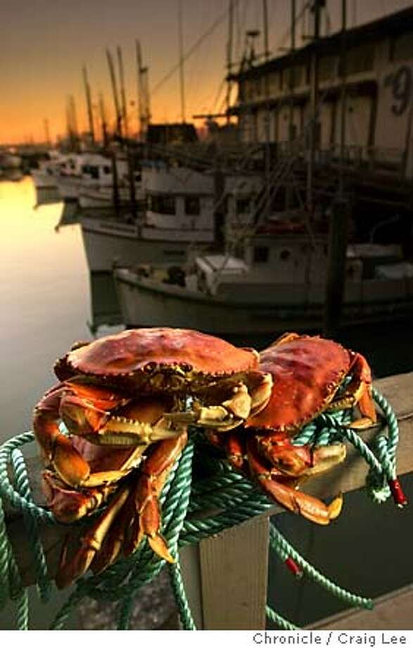 Crab season starts November 15. Feature story on the crab season for the Food cover story on November 12. Photo of crab with the fishing boats at Fisherman's Wharf in the background. Food photo styled by Noel Advincula.  Event on 10/28/03 in San Francisco.  CRAIG LEE / The Chronicle Photo: CRAIG LEE