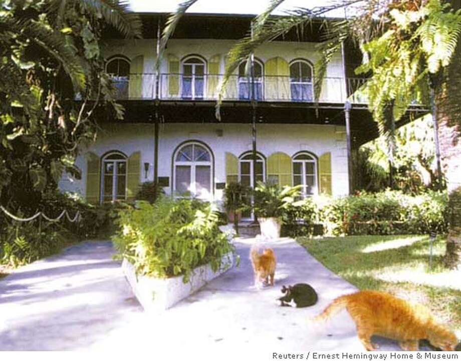 Cats rest outside the Ernest Hemingway Home & Museum, Florida Keys, in this undated handout released July 17, 2007. A game of cat and mouse is under way between the U.S. government and Florida's Ernest Hemingway Home & Museum over the fate of dozens of felines roaming the former home of the Nobel Prize-winning author. REUTERS/Ernest Hemingway Home & Museum/Handout (UNITED STATES) QUALITY FROM SOURCE. EDITORIAL USE ONLY. NOT FOR SALE FOR MARKETING OR ADVERTISING CAMPAIGNS. NO ARCHIVES. NO SALES. EUO NARCH NOSALES Photo: HO
