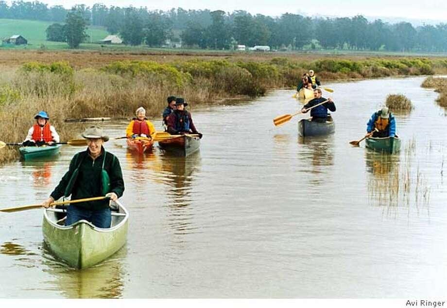 """SLUG: """"riverpet""""  CAP: """"A crew of paddlers make their way down an arm of the Petaluma River estuary; David Yearsley, wearing cowboy hat, is in the lead canoe, lower right.""""  CREDIT: Avi Ringer  FOR: Outdoors, Sports, 7/26 Photo: Avi Ringer"""