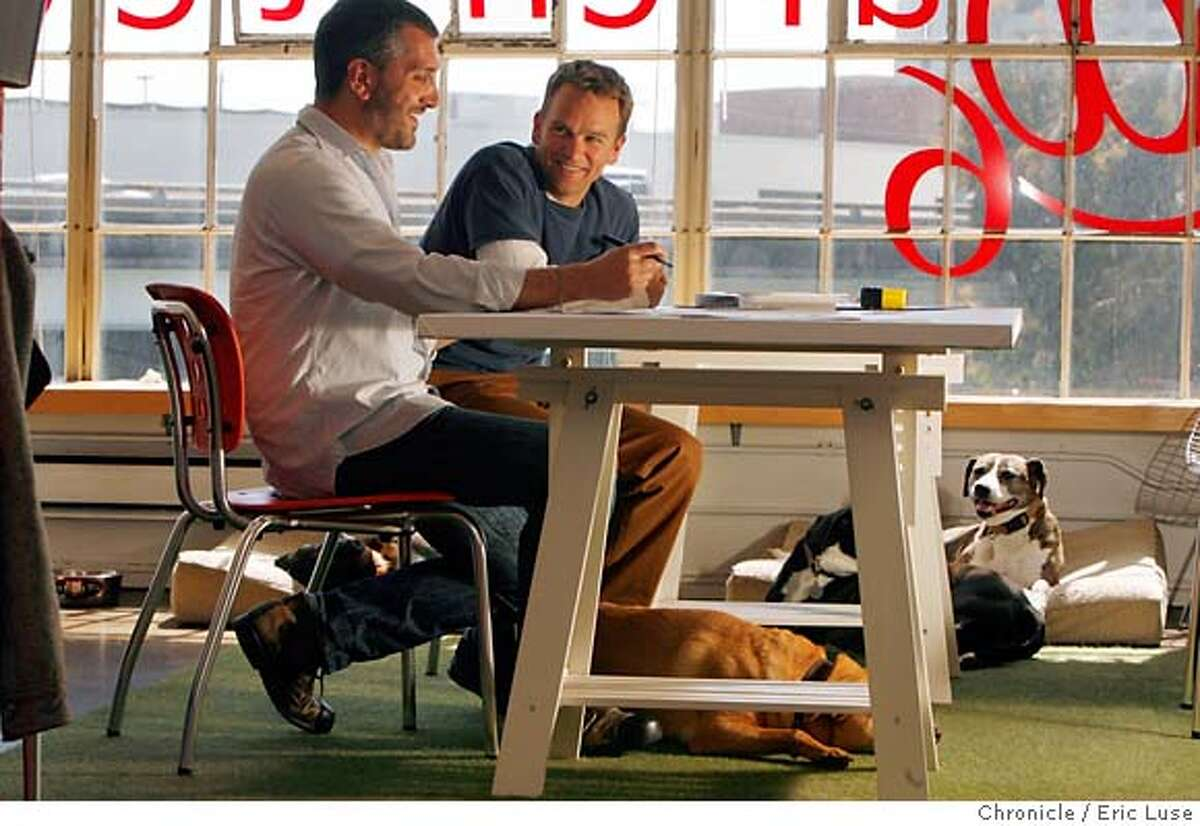 designspotting25_125.JPG @6 architecture partner's John Barone (beard) and Jason Langkammerer in their San Francisco office with their dogs. They were working over some details on a Beijing project. Under the table is Caulfield and by the window is Lulu. They have four dogs with them in the office. Photographer: Eric Luse / The Chronicle names (cq) from source Jason Langkammerer John Barone MANDATORY CREDIT FOR PHOTOG AND SF CHRONICLE/NO SALES-MAGS OUT